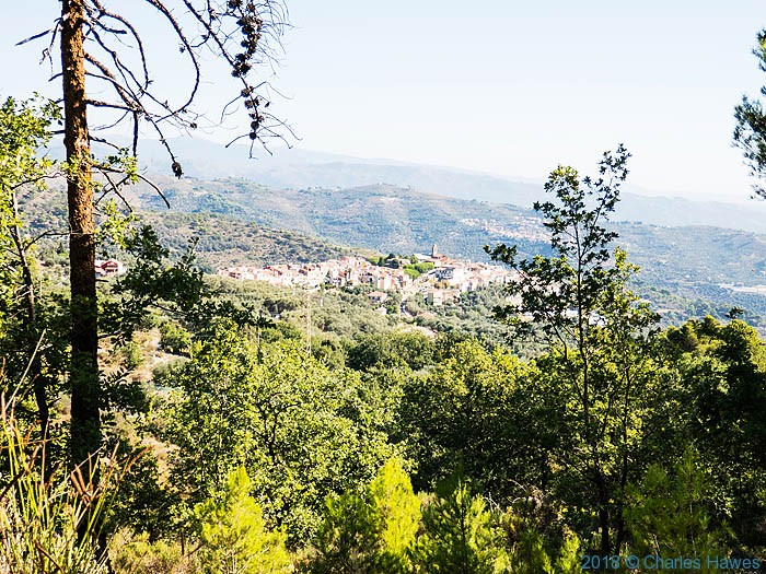 View to Castellaro from the Via della Costa in Liguria; image by Charles Hawes